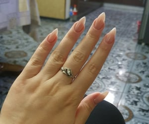 manicure, nude nails, and pink nail image