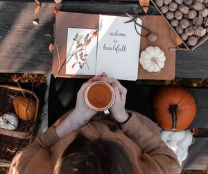 article, fall, and autumn image