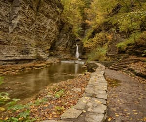 etsy, autumn leaves, and fall foliage image