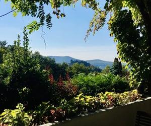 autumn, castle, and hills image
