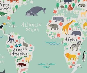animals, map, and art image