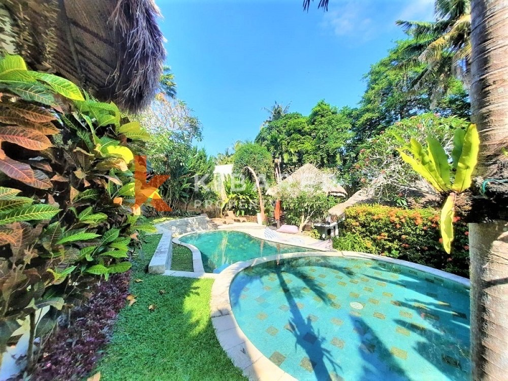 bali, indonesia, and tropical image