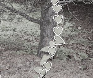 aesthetic, hearts, and leaves image