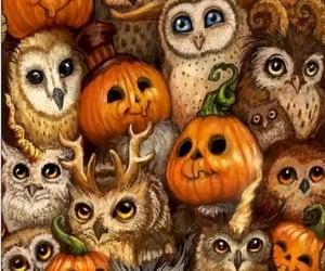 dia de los muertos, búhos, and Halloween image