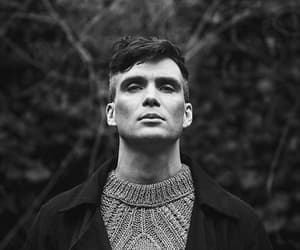 cillian murphy, handsome, and peaky blinders image