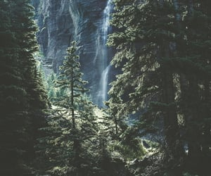 landscape, woods, and greenery image
