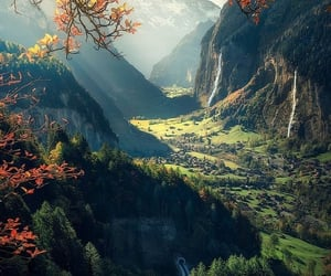 greenery, landscape, and nature image