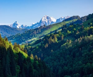 day, greenery, and mountains image