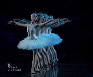ballerina, pointe shoes, and corps de ballet image