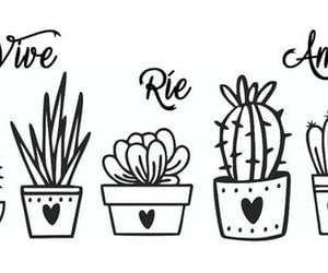 cactus, vida, and amor image