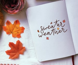 autumn, sweater, and bullet journal italia image