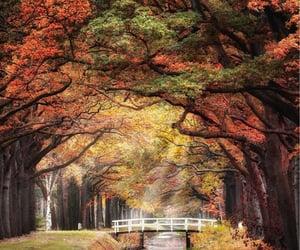 Drenthe, the Netherlands