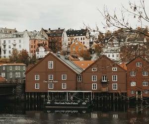 autumn, city, and lake image