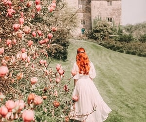 castle, flowers, and spring image