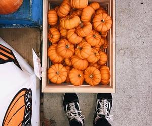 autumn, tumblr, and vans image