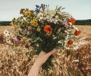 aesthetic, bouquet, and grunge image