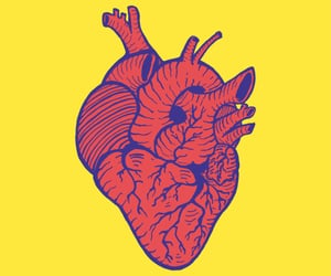 anatomy, heart, and pop art image