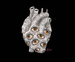 aesthetics, hearts, and human heart image