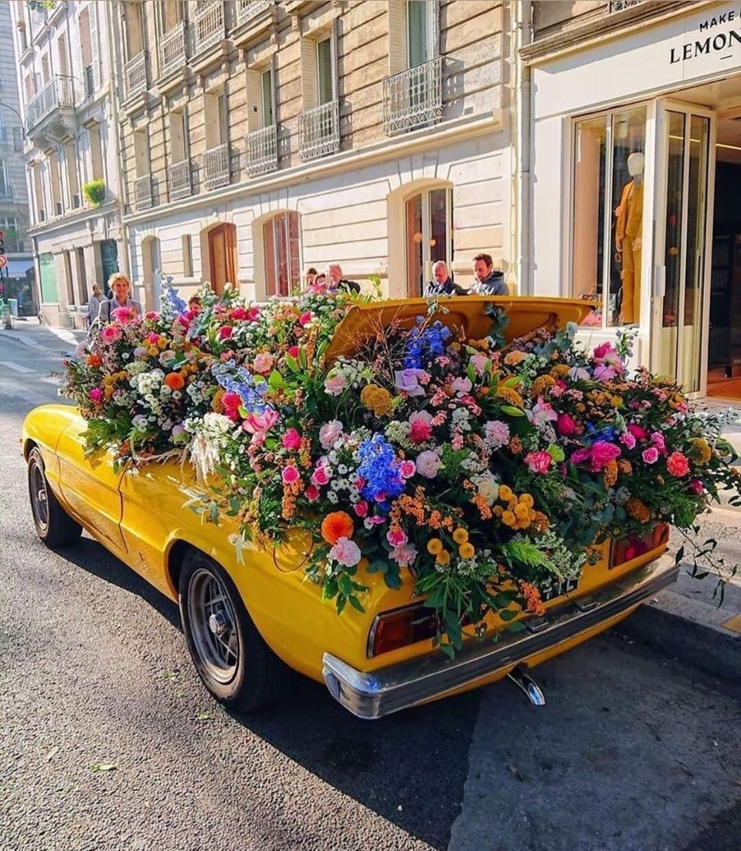 flowers, car, and city image