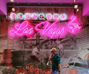 neon, pink, and storefront image