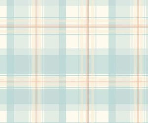 aesthetic, plaid, and cute image