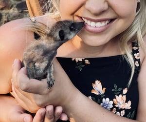 animal, dress, and baby animal image