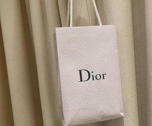 aesthetic, blossom, and dior image