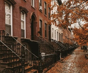 autumn, brown, and cities image