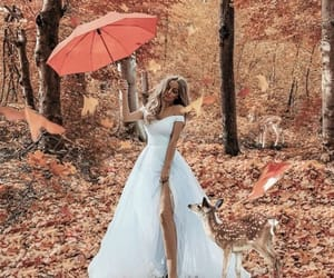 aesthetic, autumn, and dress image