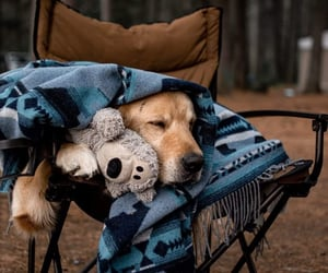 blanket, brown, and camping image