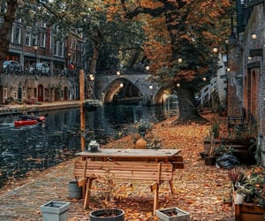 autumn, city, and places image