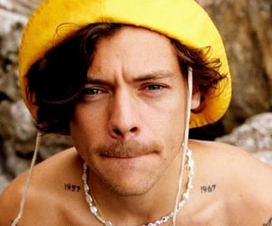 golden and Harry Styles image