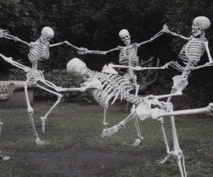 dark, skeleton, and grunge image