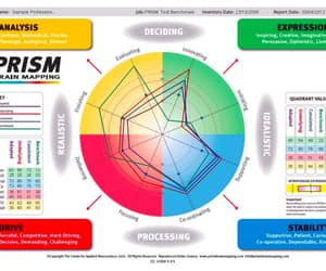 prism brain mapping image
