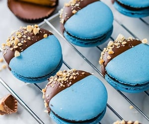 food, chocolate, and blue image