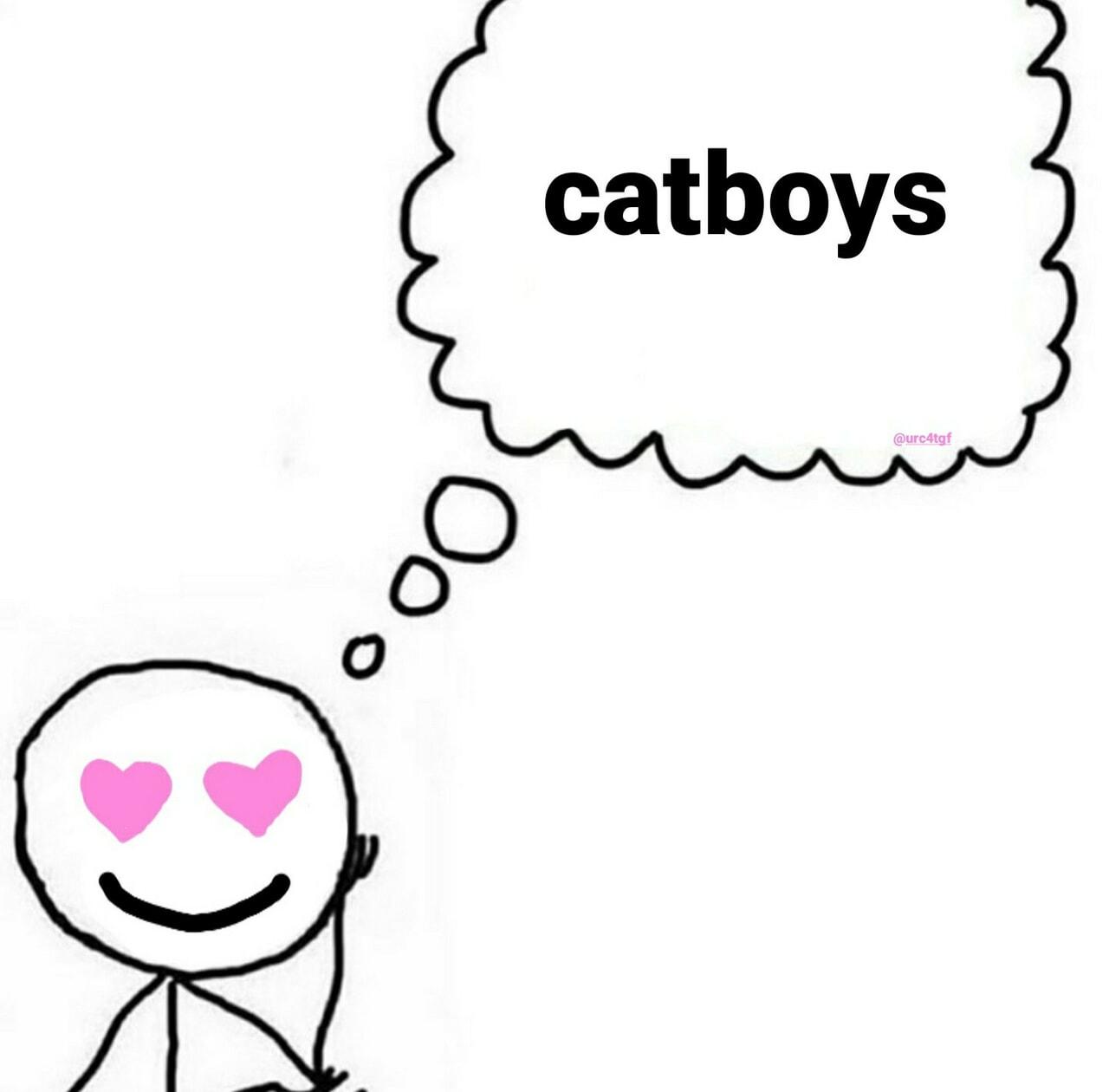 meme and catboy image