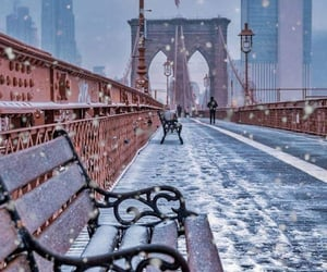 cold, new york, and winter image