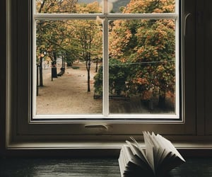 book, autumn, and window image
