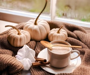 Cinnamon, coffee, and fall image