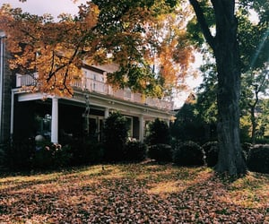autumn, house, and brown image