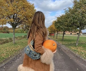 aesthetic, autumn, and autumnal image