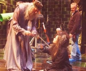 behind the scenes, harry potter, and bellatrix lestrange image