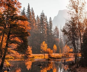 articles, autumn, and discover image