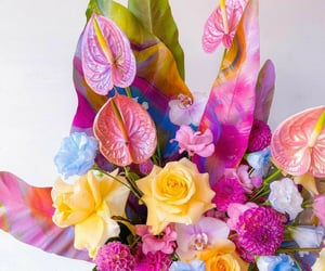 colorful, flowers, and fleurs image