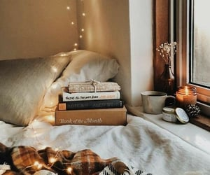 book, autumn, and light image