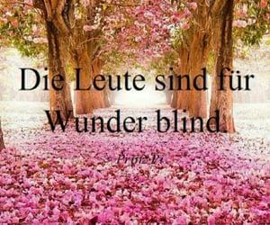 blind, deutsch, and text image