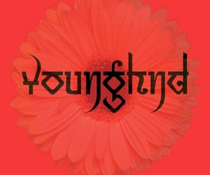 younghnd image