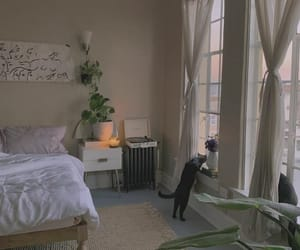 bedroom, cats, and decoracao image