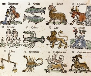 astrology, zodiac, and pisces image