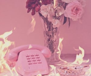 pink, fire, and rose image